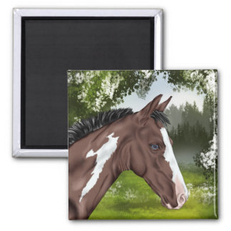 Blue Eyed Bay Paint Horse Foal Magnet