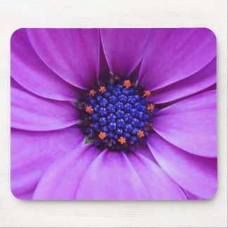 Blue-Eyed Beauty Mouse Pad