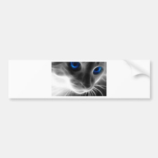 Blue Eyed Black and White Kitty Cat Bumper Sticker
