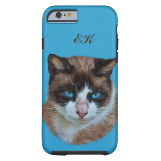 Blue Eyed Brown and White Haughty Cat, Monogram Tough iPhone 6 Case