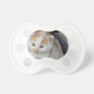 Blue Eyed, Brown and White patched Kitten in boot Pacifier