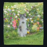 """Blue Eyed Cat Among The Flowers, Customizable Bandana<br><div class=""""desc"""">A beautiful black white short haired cat with blue eyes sits among the colorful flowers.    Bright pink gladiolus,  purple irises,  red tulips,  and purple pansies are just some of the flowers in this garden.   Customize by adding your own caption,  name,  or monogram to the product.</div>"""