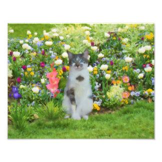 Blue Eyed Cat Among The Flowers Photo Print