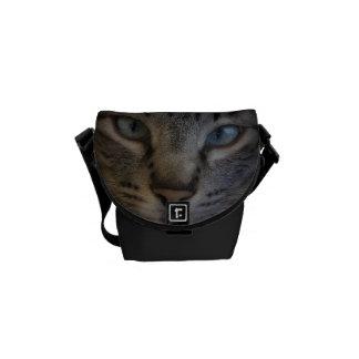 Blue eyed cat bag-Bolsa gato ojos azules Bolsas De Mensajeria