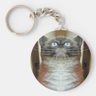 Blue-eyed cat funny portrait key chains