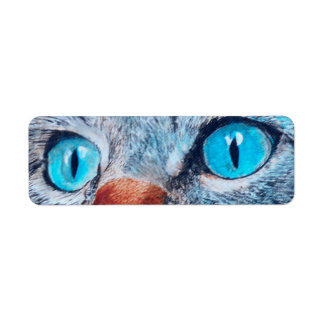 Blue Eyed Cat Label