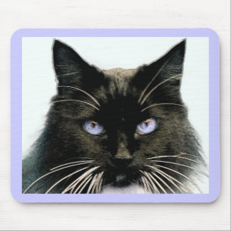 Blue-eyed Cat Mouse Pad