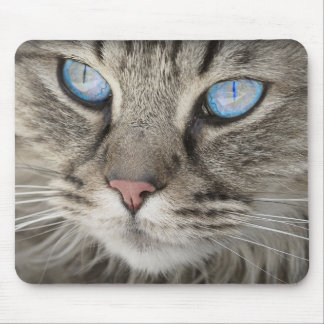 Blue Eyed Cat Mousemat Mouse Pad