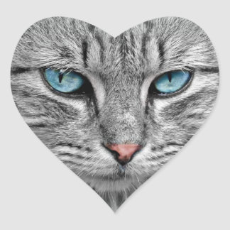Blue-Eyed Cat Sticker
