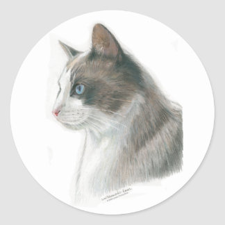 Blue Eyed Cat Stickers