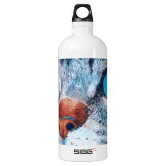 Blue-eyed Cat Water Bottle