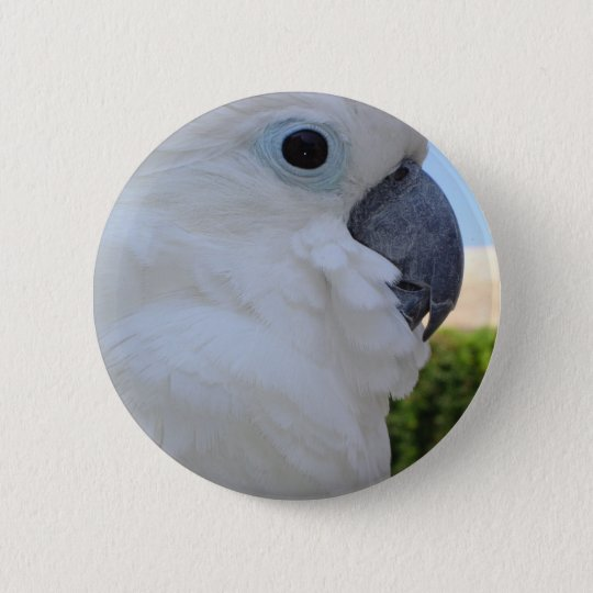 Blue Eyed Cockatoo Button