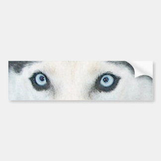 Blue eyed dogs can see the wind car bumper sticker