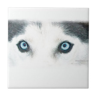 Blue eyed dogs can see the wind small square tile
