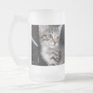 Blue Eyed Fluffy Grey Kitten, Frosted Glass Beer Mug