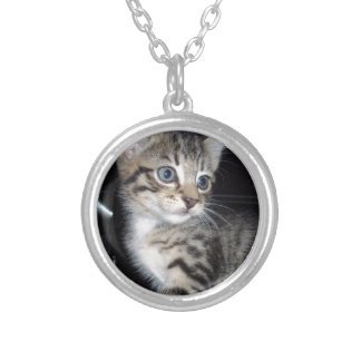 Blue Eyed Fluffy Grey Kitten, Silver Plated Necklace
