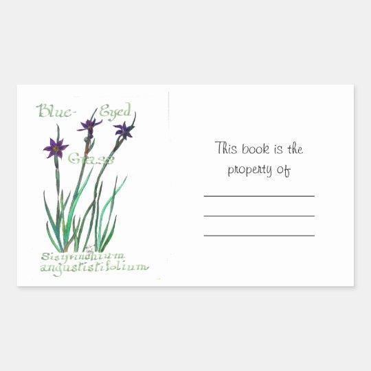 Blue-Eyed Grass Book Sticker