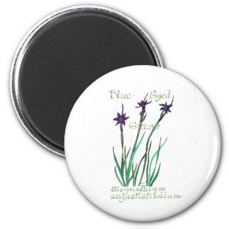 Blue-Eyed Grass Magnet