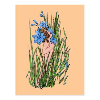 Blue-Eyed Grass Postcard