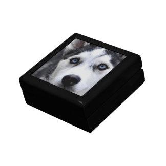 Blue Eyed Husky Gift Box