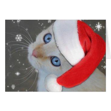 Christmas Themed Blue Eyed Kitten Christmas Card