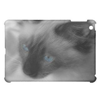 Blue Eyed Kitten Ipad Case
