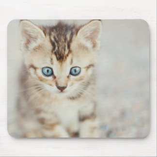 Blue Eyed Kitty Mouse Pad