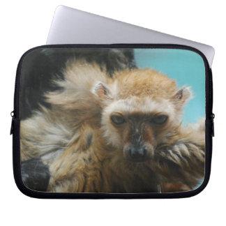 Blue Eyed Lemur Electronics Bag Laptop Computer Sleeves
