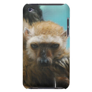 Blue Eyed Lemur iTouch Case iPod Touch Cases