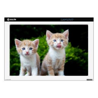 "Blue-Eyed Orange Kittens Decals For 17"" Laptops"