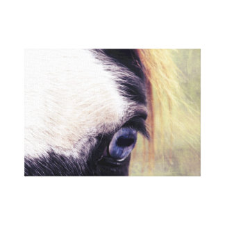 Blue Eyed Paint Horse Canvas Print