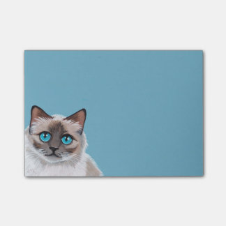 Blue Eyed Ragdoll Cat Portrait Painting Post-it® Notes