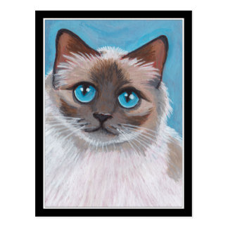Blue Eyed Ragdoll Cat Portrait Painting Postcard
