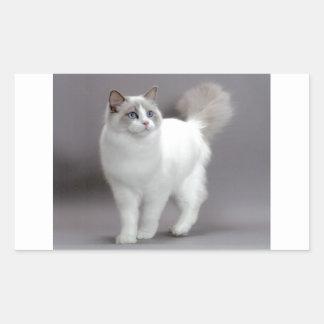 Blue-Eyed Ragdoll Cat Purfection Rectangle Sticker