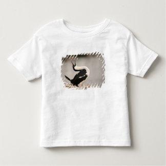 Blue-Eyed Shag in nesting colony Petermann T Shirt