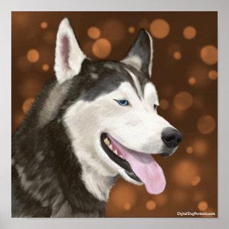 Blue Eyed Siberian Husky  Brown Bokeh Backgroud Posters