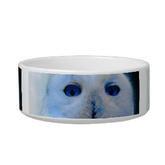 Blue Eyed Snow Owl Bowl