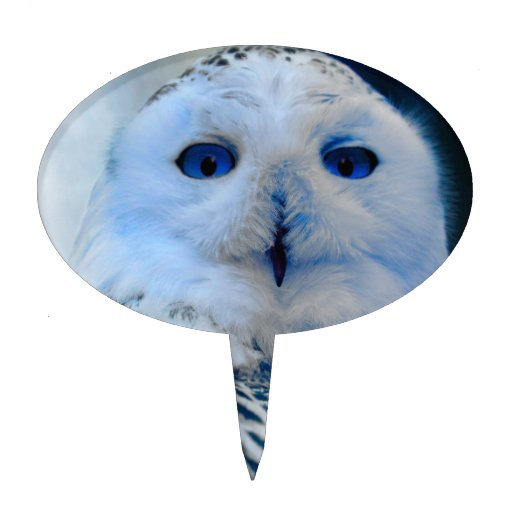 Blue Eyed Snow Owl Cake Topper