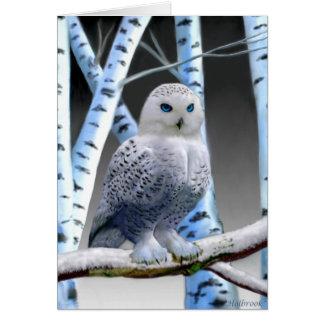 BLUE-EYED SNOW OWL CARD