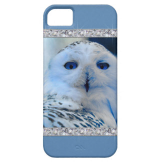 Blue Eyed Snow Owl iPhone 5 Cover