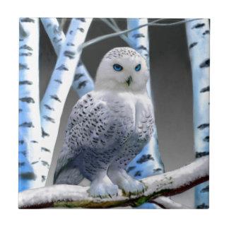 Blue-eyed Snow Owl Ceramic Tile