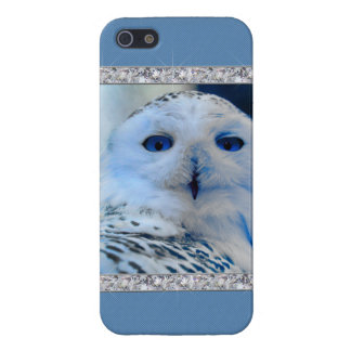 Blue Eyed Snow Owl Cover For iPhone 5