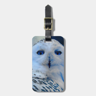 Blue Eyed Snow Owl Tag For Bags