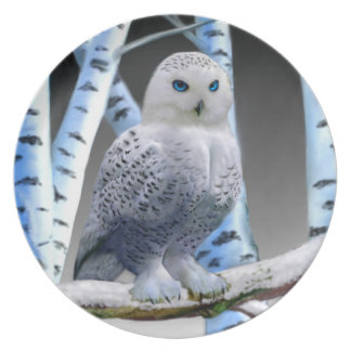 BLUE-EYED SNOW OWL MELAMINE PLATE