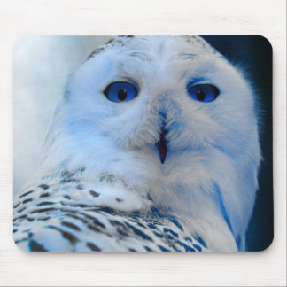 Blue Eyed Snow Owl Mouse Pad