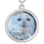 Blue Eyed Snow Owl Silver Plated Necklace