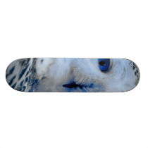 Blue Eyed Snow Owl Skateboard