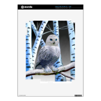 Blue-eyed Snow Owl Skins For The iPad 2