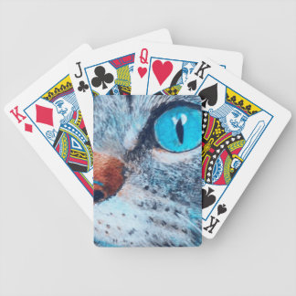Blue-eyed Tabby Bicycle Playing Cards