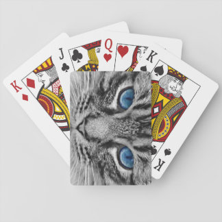 Blue-eyed Tabby Cat Playing Cards Gray Tiger